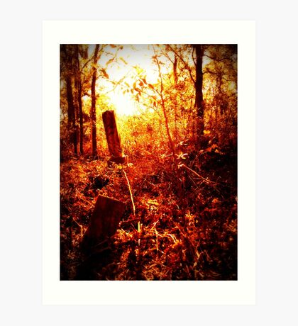 st mary's cemetery buried Art Print