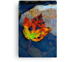 First of the Autumn Colours, River Tees, England Canvas Print