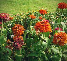 Las flores marchitas by Gema Zavala