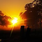 Misty Country Sunrise by Julie Sleeman
