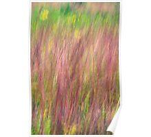 Kitty Todd Nature Preserve Prairie Grass Impressionism Poster