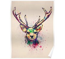 Young Stag Poster