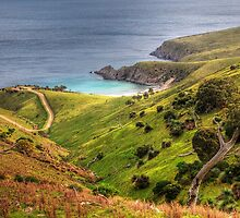 Looking down on Blowhole Beach. SA. by Simon Bannatyne
