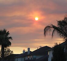 The View from My Backyard by Norma Jean Lipert