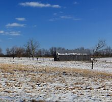 Kentucky Barn in Winter by Michael L. Colwell