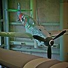 Messerschmitt Bf-109G by Mike Capone