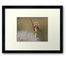 Stands Alone Framed Print