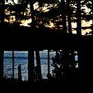 Trout Lake Sunset by MWags