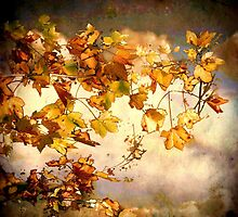 As Autumn leaves by Alan Mattison