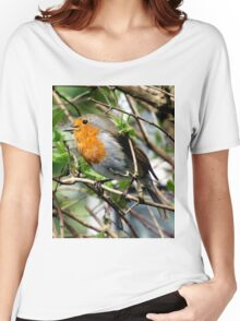 Singing Robin Women's Relaxed Fit T-Shirt