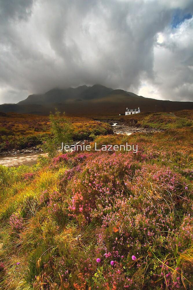 Wild Mountain Thyme by Jeanie