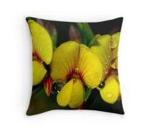 Aotus ericoides  Throw Pillow