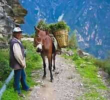 Tiger Leaping Gorge by Dean Cunningham
