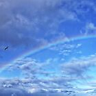 Over The Rainbow by AmandaJanePhoto
