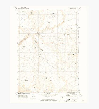 USGS Topo Map Oregon Downey Canyon 279685 1969 24000 Photographic Print