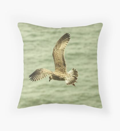 Herring Gull....Juvenile Throw Pillow