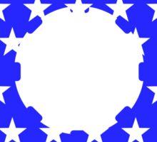 USA pinion Sticker