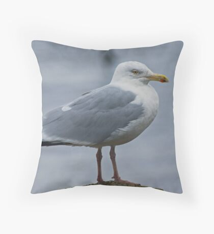 Herring Gull....Adult Throw Pillow