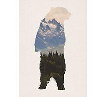 Bear with woodland scene Photographic Print