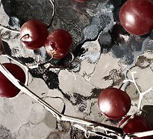winter tomatoes by LouJay
