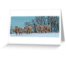 Rams in Snow Greeting Card