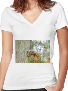Short eared Owl  Women's Fitted V-Neck T-Shirt