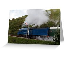 A4 Pacific 4492 Greeting Card
