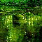 river by agnès trachet