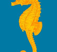 Seahorse by monsterplanet