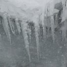 Winter's Chandelier by Sarah Trent