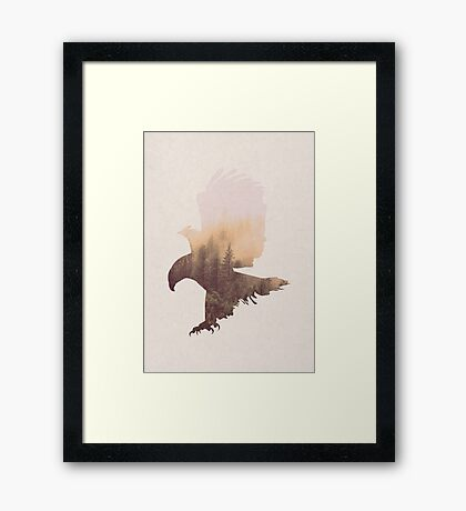 Eagle - Bird of Prey Framed Print