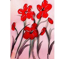 Red flowers, (bamboo brush),  watercolor Photographic Print