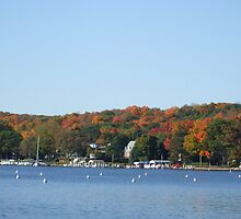 Colors on lake Geneva by Dan Wagner