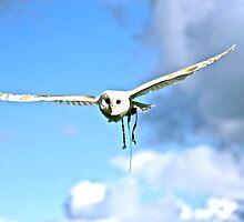 angel mid flight by hellibelli5000