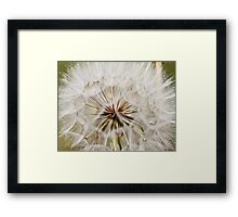 where I hide Framed Print