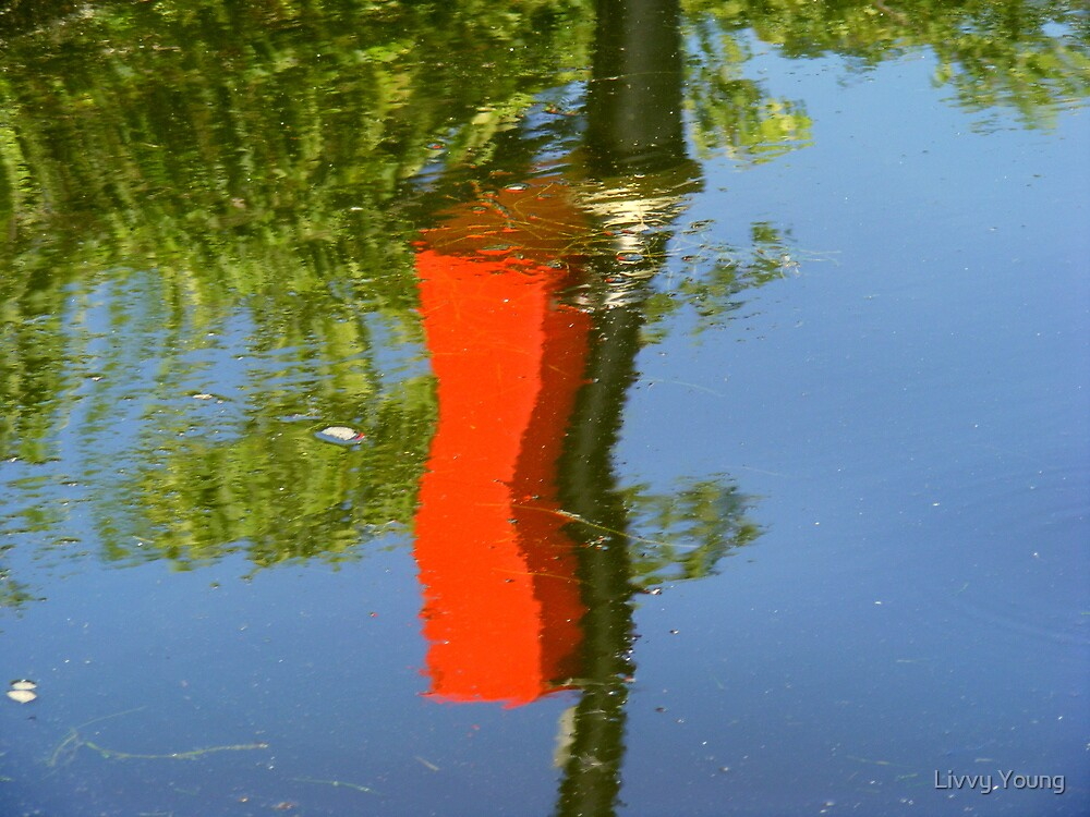 Reflection by Livvy Young