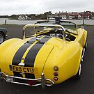 Cobra - Cosworth by Barry Norton