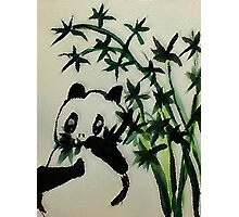 Adult Panda eating bamboo. watercolor.  Photographic Print