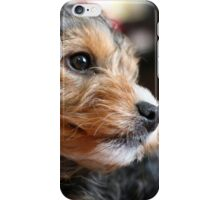 12 Week old Puppy iPhone Case/Skin