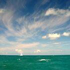 Sailing by Leon Heyns