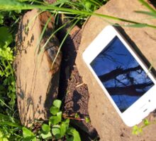 Smartphone on a rock in a meadow Sticker