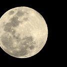 Full Moon by Nicki Baker