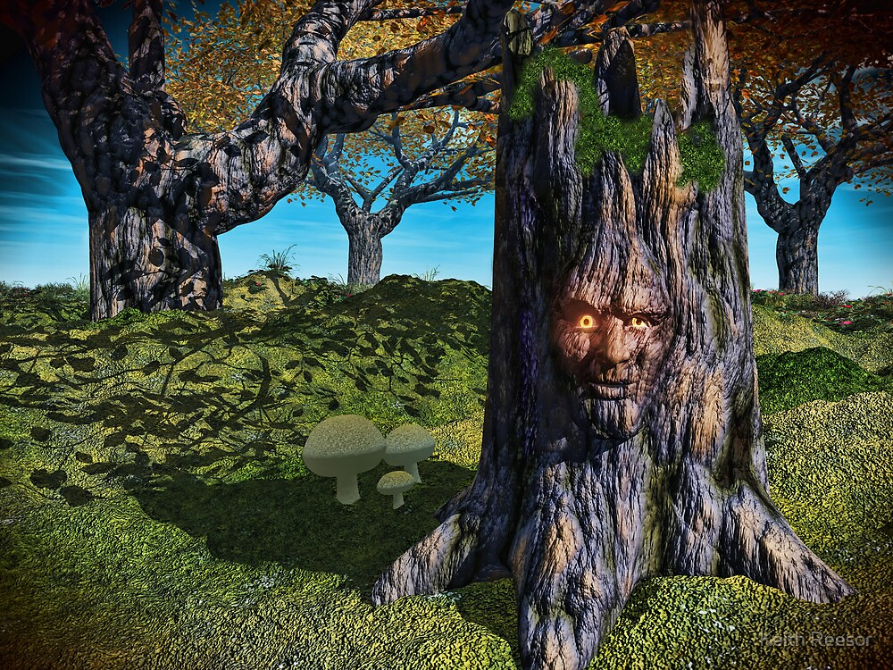 Old Man Of The Wood by Keith Reesor