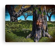 Old Man Of The Wood Canvas Print
