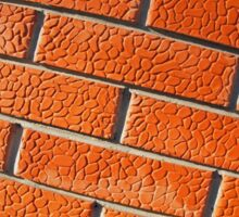 Wall of decorative red bricks close up Sticker