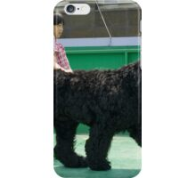 Awesome Black Russian Terrier