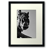 A Friendly Face in Chester Framed Print