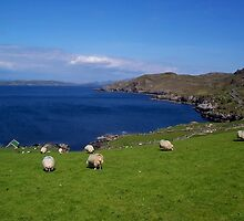 Dingle Peninsula - Ireland by Michael L. Colwell