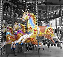 Carousel Horses by Furtographic