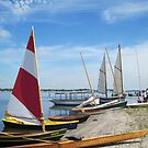 Traditional wooden boats on the beach at the 2011 Small Craft Festival by Ray Vaughan